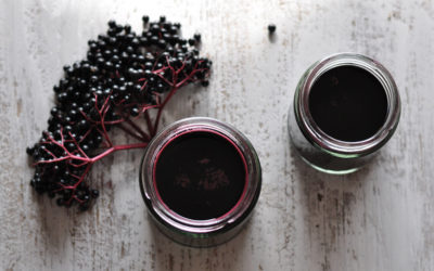 Homemade Elderberry Syrup – To Banish Any Autumn/Winter Bugs